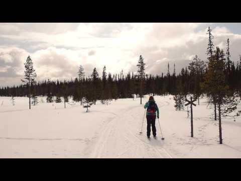 Hetta-Pallas -hiihtovaellus
