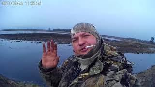 Охота на гуся в Беларуси 2017