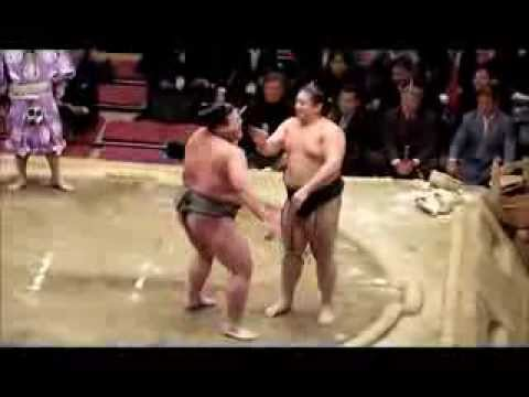 The funniest SUMO Wrestlers in JAPAN