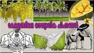 കേരളത്തിലെ ഔദ്യോഗിക ചിഹ്നങ്ങൾ | State Symbols of Kerala