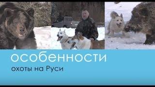 Натаска лаек на Медведя и Кабана - Беляков Хантинг