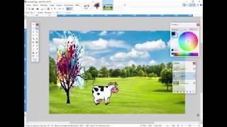 P01 Superposer des images avec PAINT.NET