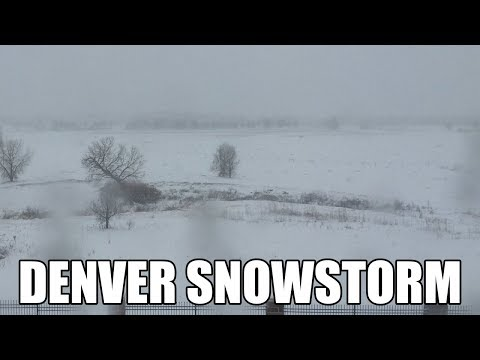 LIVE: Denver Colorado Snowstorm Time Lapse on January 21, 2017 - 6+ Inches