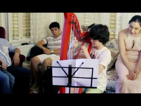 Haiku For The Harp