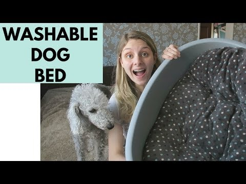 washable-dog-bed---my-favourite-dog-bed