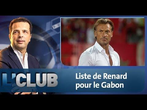 Liste de Renard pour le Gabon