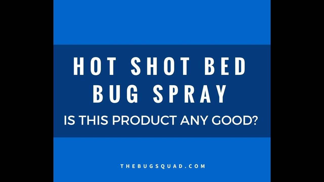 is hot shot bed bug spray any good? [the bug squad] - youtube