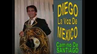 Gritenme piedras del Campo y fotos del Camino de Santiago de Diego Muñoz