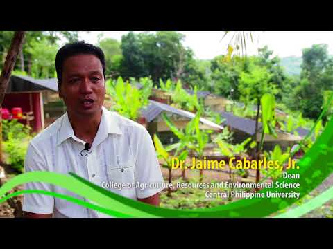 Paggawa ng Organic Supplemental Feeds para sa Native Chicken