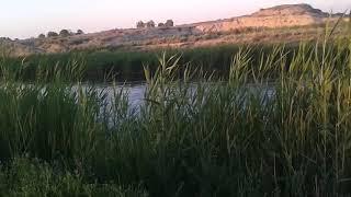 Полювання і риболовля Баканас Погоди сел. Міст Айдархан.