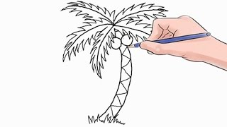 How to Draw a Palm Tree Easy Step by Step