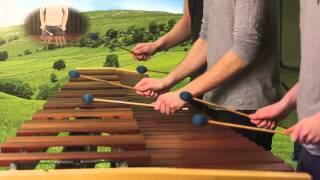Zelda Ocarina of Time - Hyrule Field Theme on Marimba