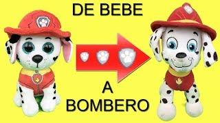 Juguetes paw patrol español:bebes Chase y Skye!Marshall bombero patrulla canina.Nuevo capitulo 2018