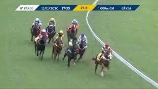 Vidéo de la course PMU PREMIO ORPHEUS