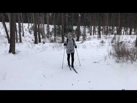 Pattee Canyon Southside Ski Trail, February 10, 2019