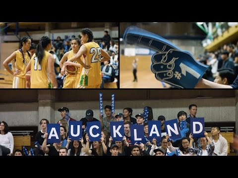 The Auckland Experience