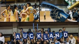 The Auckland Experience thumbnail