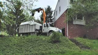 Bulldog Tree Service