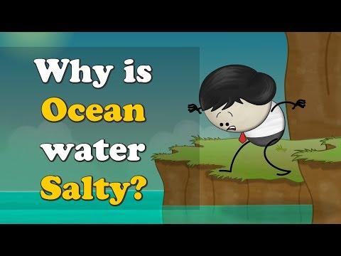 Why Is Ocean Water Salty?   #aumsum