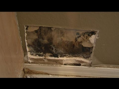 Black Mold From Home Builder Defect Causing Homeowners Headaches