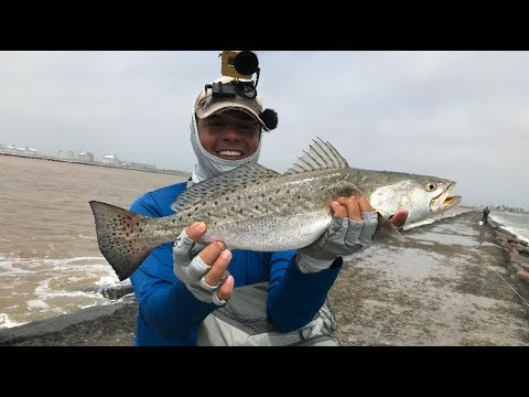 Fat Speckled Trout On The Slip Cork, Surfside Jetty TX
