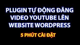 Plugin tự động đăng video youtube lên website wordpress