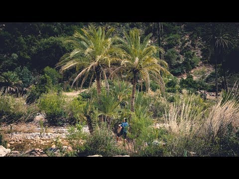 EXPLORING AN OASIS IN MOROCCO | Paradise Valley | Road Trip Ep:3