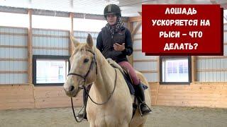 Как помочь лошади, которая ускоряется на рыси? (CRKtraining)