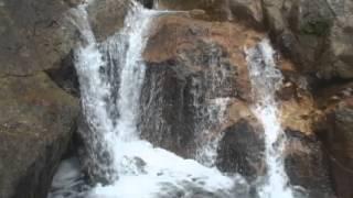 Güisayote Bosque Nublado y Agua (2da. parte)