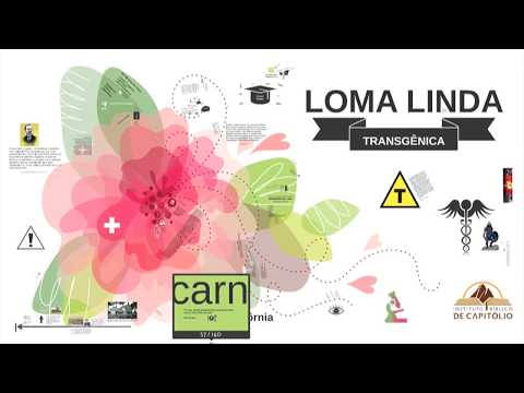 Loma Linda Transgênica 2