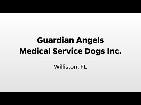 Download Guardian Angels Medical Service Dogs - WUFT's Greater Good