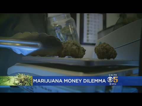 Report Dashes Hopes For State-Backed Bank For Pot Industry In California