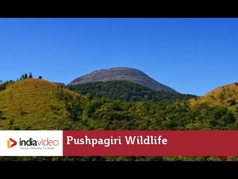 Pushpagiri Wildlife Sanctuary - A Green Destination