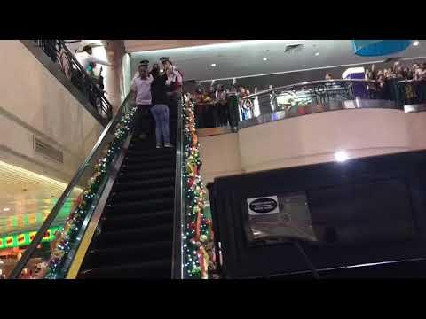 KYLINE ALCANTARA, MULING DINUMOG NG SUNFLOWERS SA KANYANG  EVER GOTESCO MALL SHOW! Watch this!