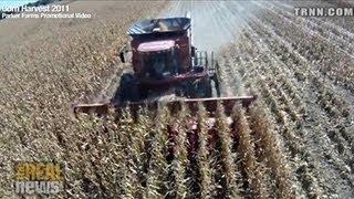Subsidized Corn Destroying Global Bio-Diversity