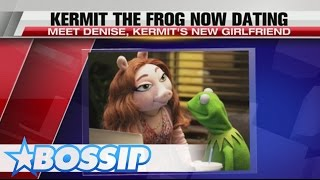 Kermit The Frog Is Jumping On A Pig And It