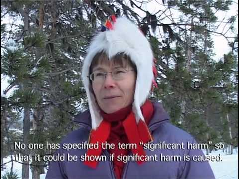 The Last Yoik in Sami Forests? - a documentary video for the