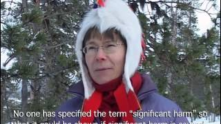 The Last Yoik in Sami Forests? - a documentary video for the UN.