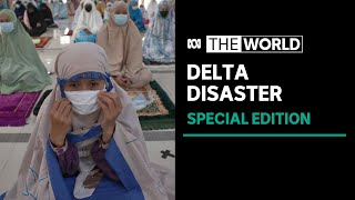 Delta Disaster: The World special edition