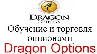 Обучение и торговля опционами с Dragon Options