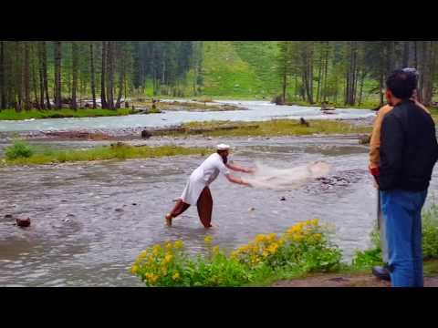Catching Trout Fish at Kumrat Valley (Pakistan)