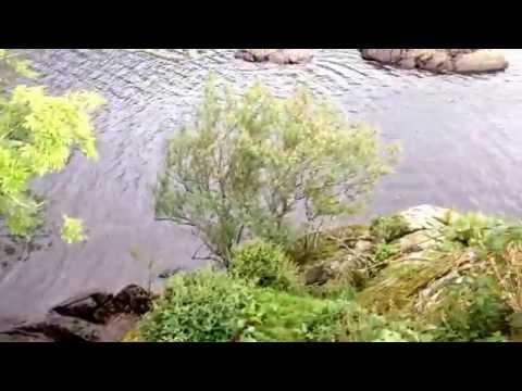 Norfolk Island Wild Camp