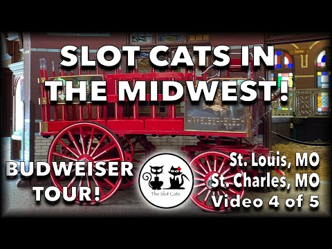 BUDWEISER BREWERY! 🎥 VLOG Midwest Meow Mixer (4 Of 5) AMERISTAR ★ SLOT PLAY