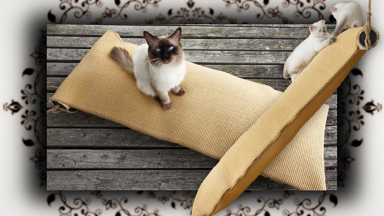 diy kletter sack f r katzen climbing bag for cats. Black Bedroom Furniture Sets. Home Design Ideas