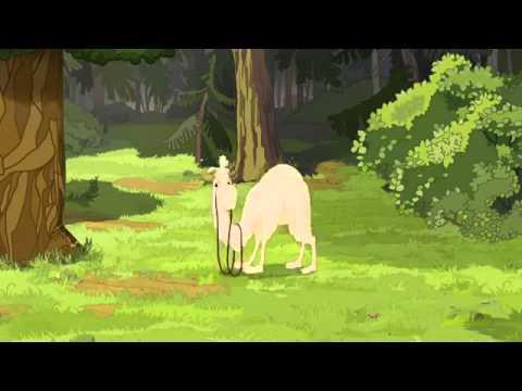Жизнь страны в руках верблюда
