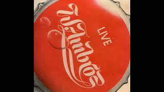 Wolfgang Ambros - Des Sandlers Flucht (live 1979)
