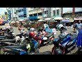 Update Pasar Burung Palembang Maret   Mp3 - Mp4 Download