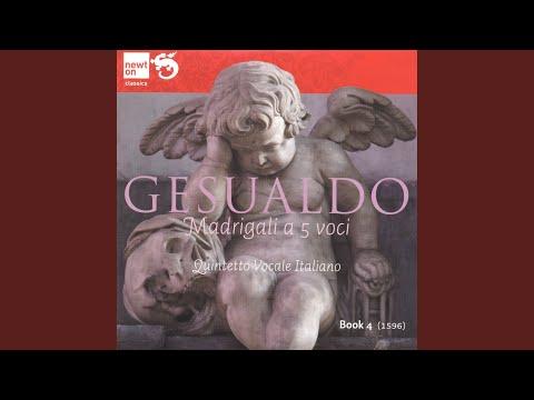 Gesualdo - Arlotti: Luci serene e chiare
