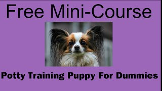 **WOOT** Potty Training Puppy For Dummies - Free Mini-course