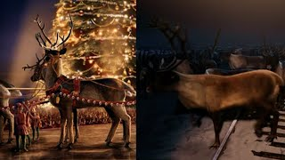 [Performance Series] 03 Reindeer Facts